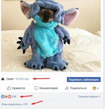 Фан страница (группа) в Facebook 17000 участников.
