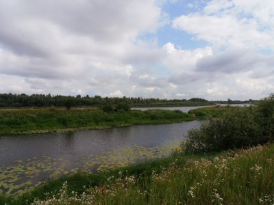 Участок под застройку с. Зазимье 25 соток в 50 метрах от речки Десна