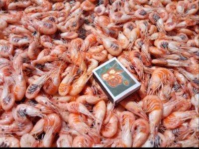 Продажа черноморской креветки