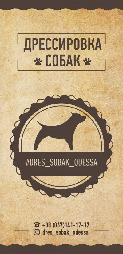 Дрессировка собак Dres_sobak_odessa