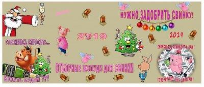 2019 год свинки