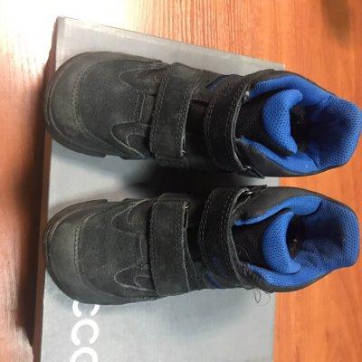Детские зимние ботинки на мальчика ecco синие