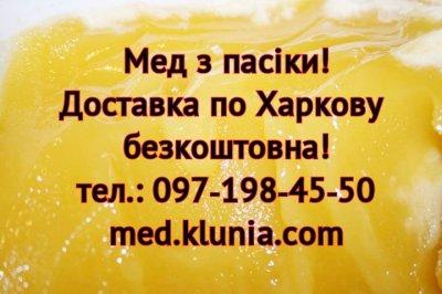 Мед Харків. Продам мед в Харкові. Купити мед в Харкові. Мед ціна
