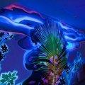 Флуоресцентная краска Нокстон, более 15-ти цветов