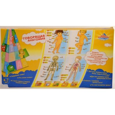 """Интерактивный плакат """"Говорящая анатомия для детей"""" 13129"""