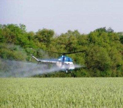 Інсектицидний захист пшениці - агропослуги гвинтокрила