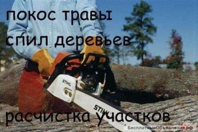 Уборка расчистка участка ,территории ,вывоз мусора,демонтаж Одесса