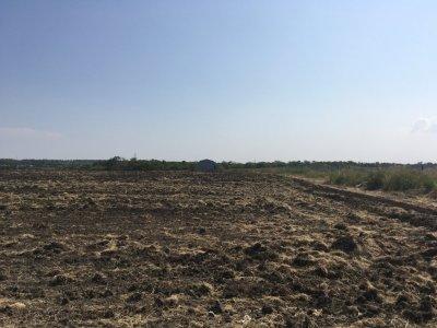 Продам земельный участок Запорожская область. Цена договорная.