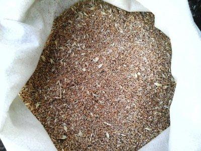 Зерноотходы пшеницы для корма скота, птицы