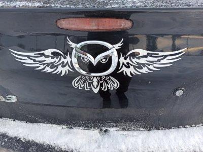Наклейка на авто Сова Белая на задний значок авто