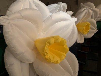 Inflatable flowers Надувные цветы для торжественных мероприятий