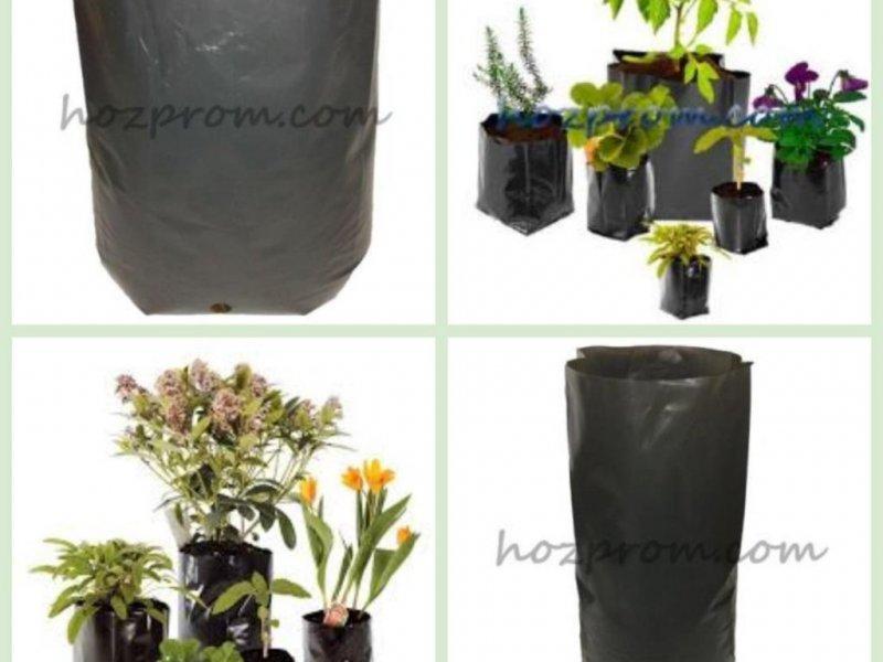 Комплект пакетов для рассады Выращивание голубики Мешочки для посадки
