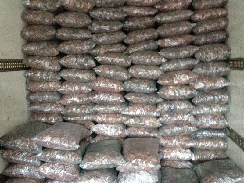 Станки для переработки и упаковки сосновой коры