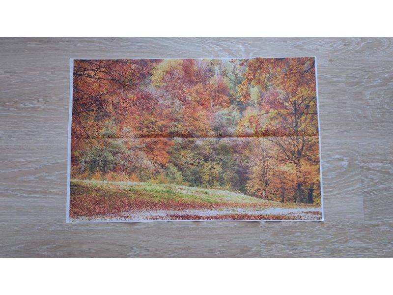 Картина на стену Осень ,картинка